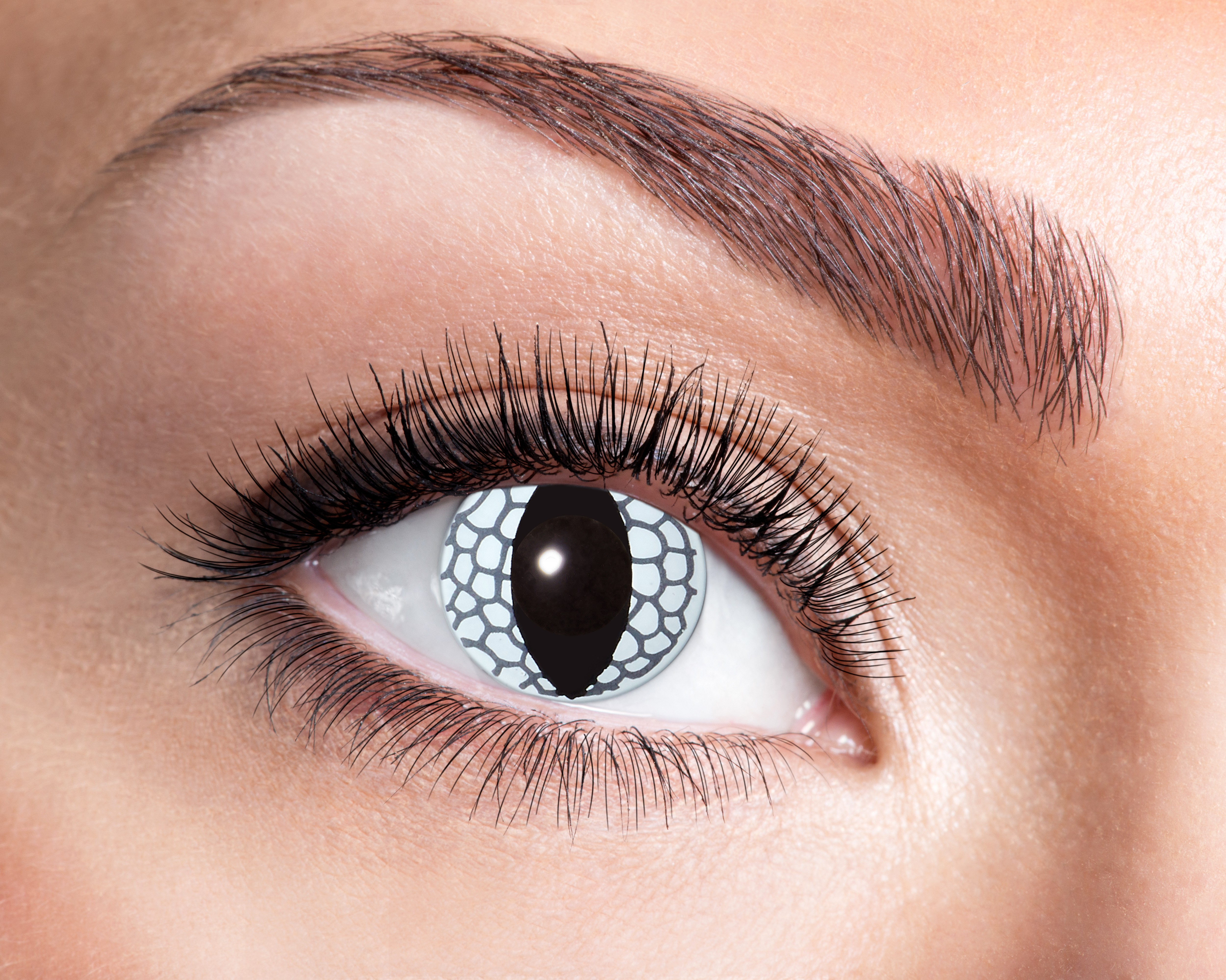 Image of   Hvid drage kontaktlinser