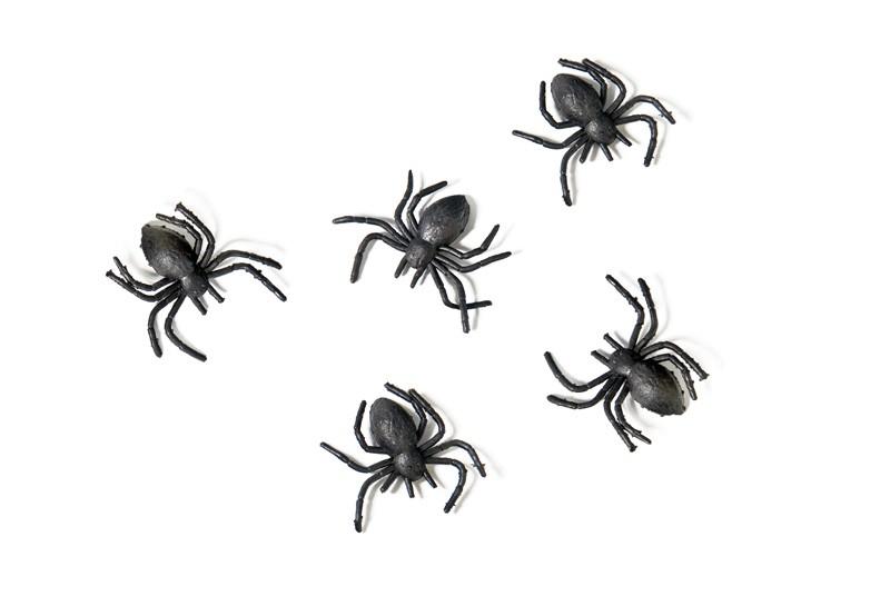 Billede af Edderkopper - 10 stk.